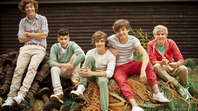 One Direction, Лучшие музыканты и певцы, Лиам Пейн, Найл Хоран, Луи Томлинсон, Гарри Стайлс, Зейн Малик (horizontal)
