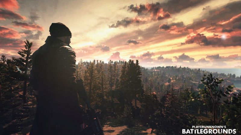 Playerunknown's Battlegrounds, ММО, шутер, ПК