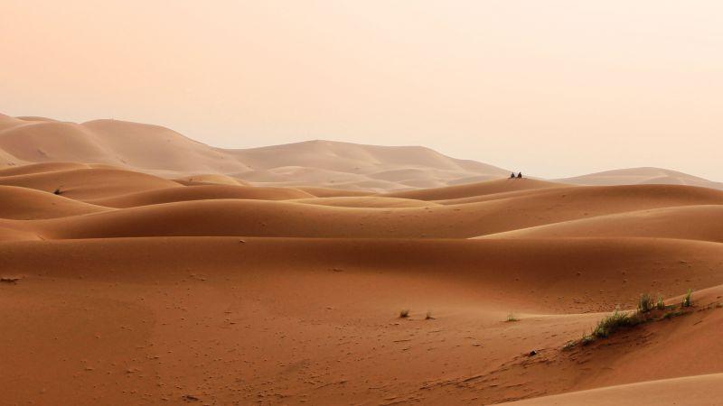 пустыня, песок (horizontal)