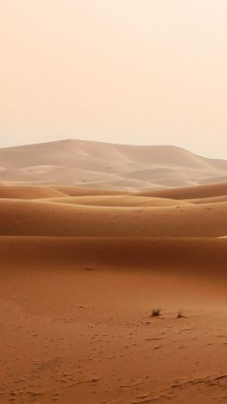 пустыня, песок (vertical)