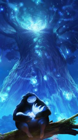 Ori and the Blind Forest: Definitive Edition, GDC Awards 2016, ПК, Икс Бокс 1 (vertical)