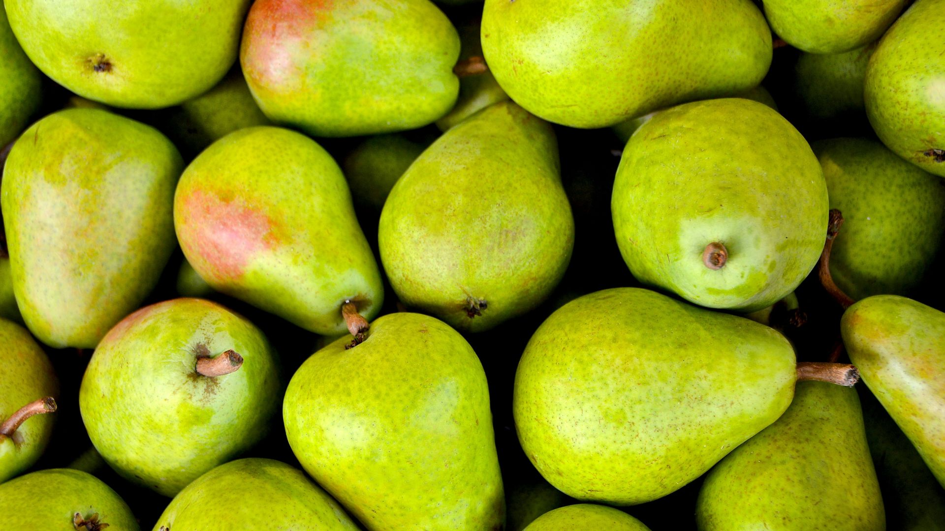 груши, pear, fruit, green, 5k (horizontal)