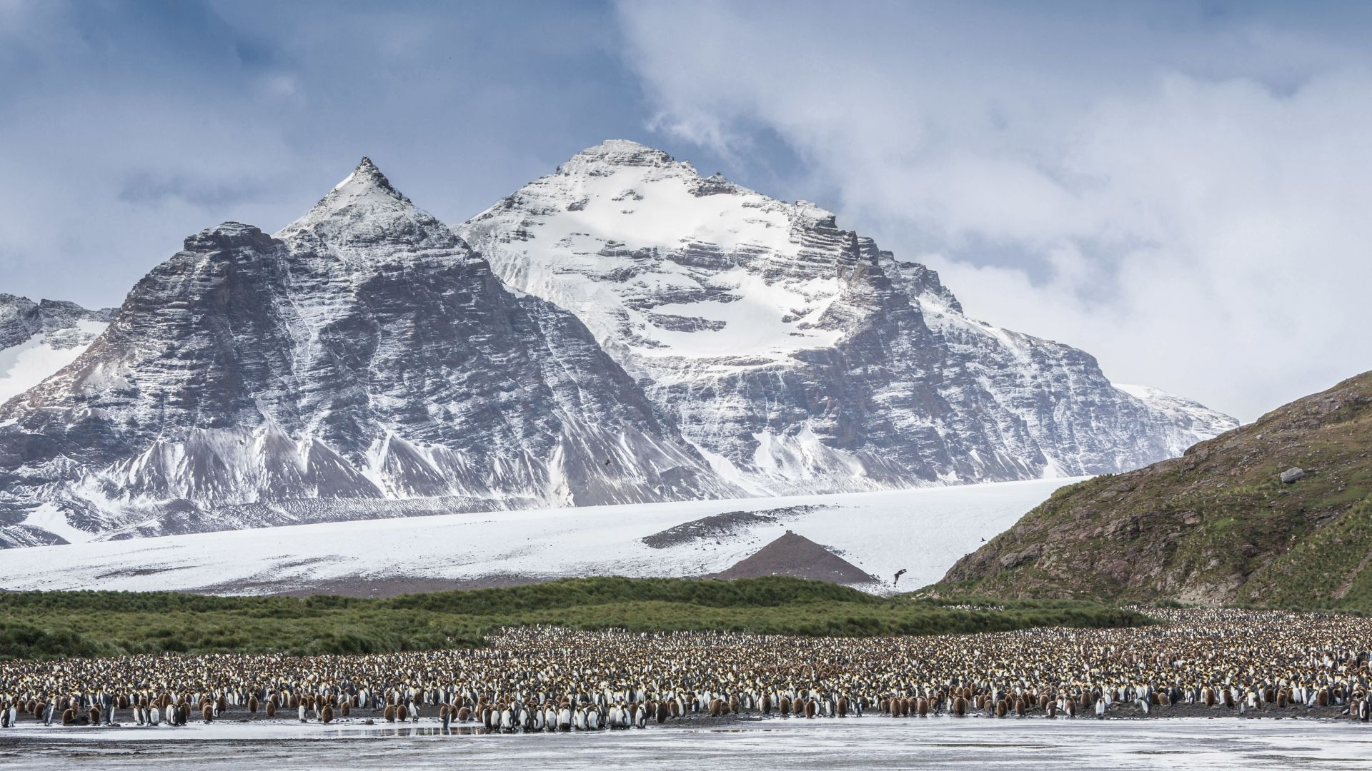 Антарктида, пингвины, Antarctica, mountains, penguins, 5k (horizontal)