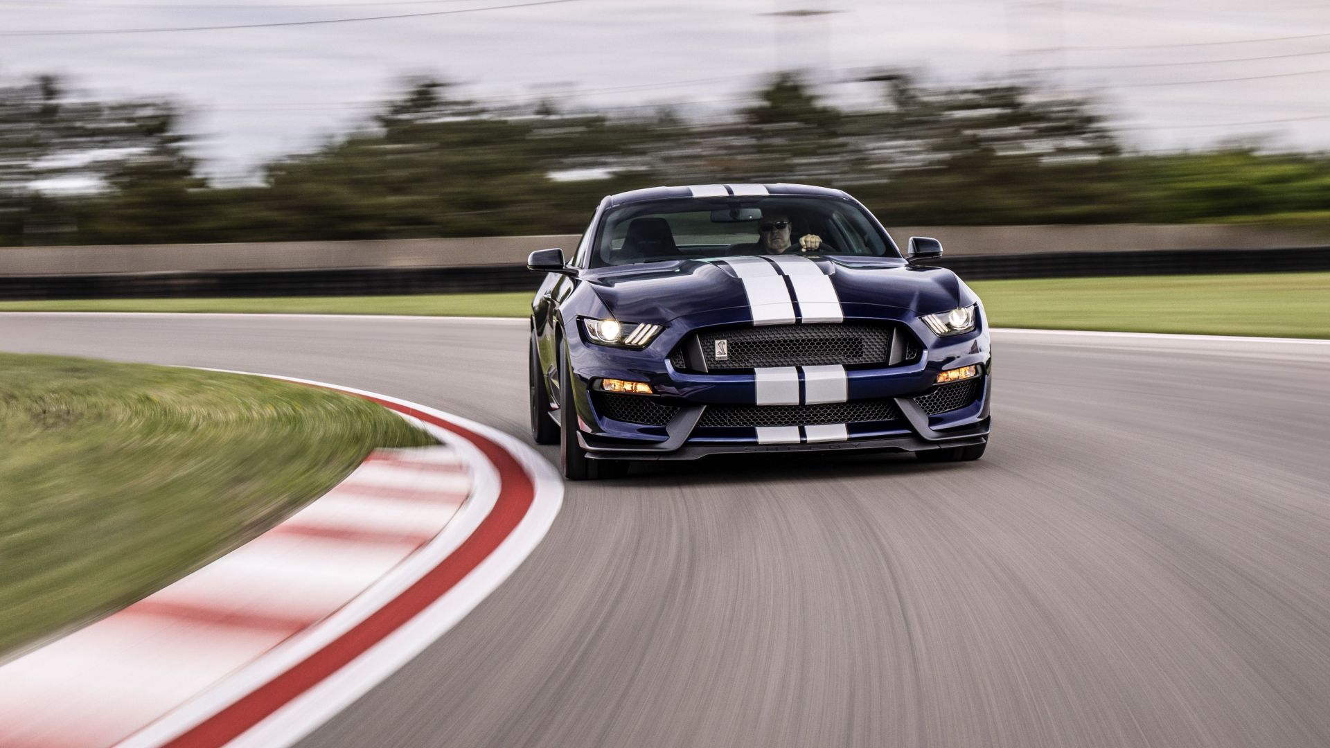 Мустанг Шелби GT350, Ford Mustang Shelby GT350, 2019 Cars, 4K (horizontal)