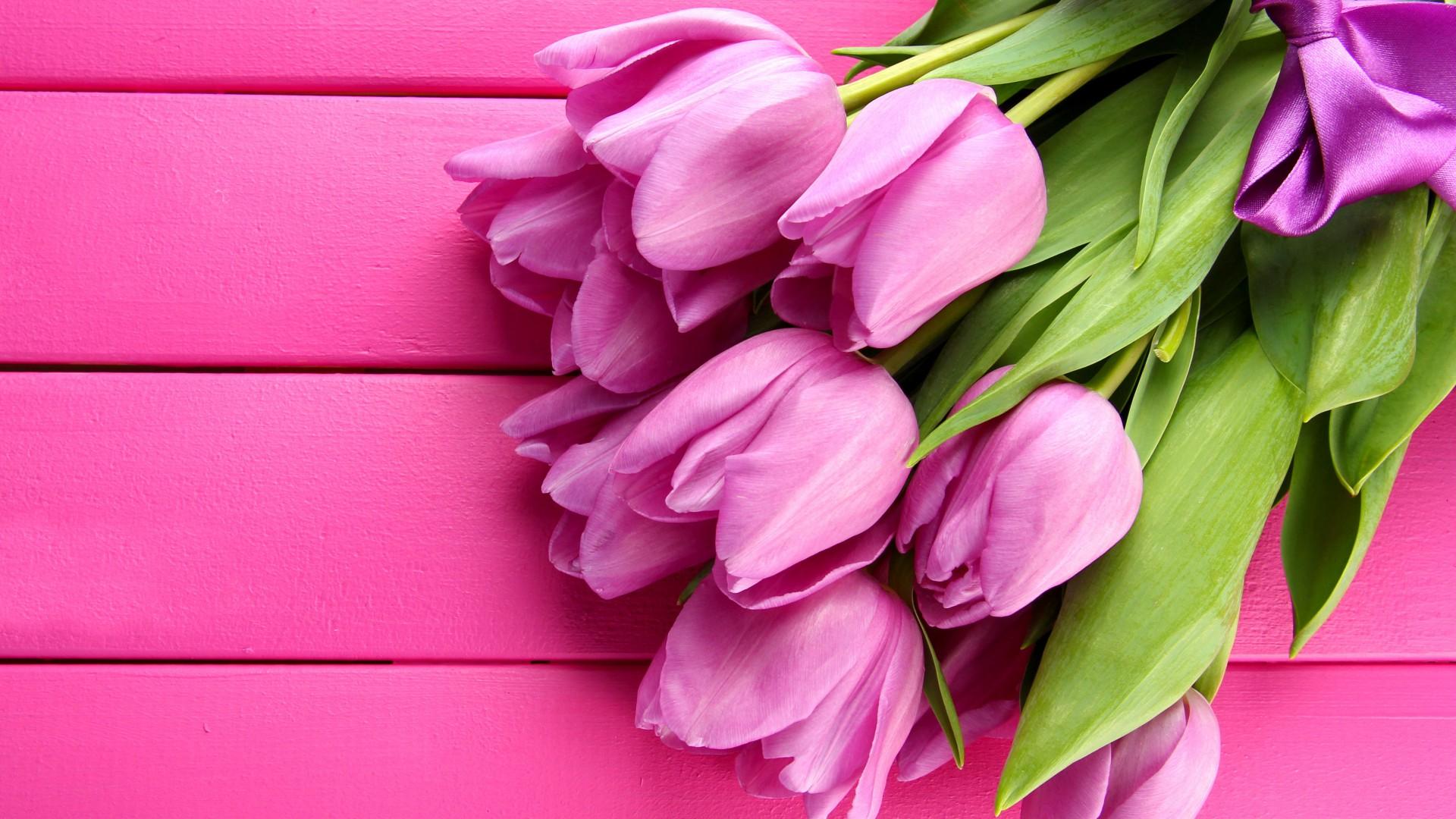 Фон для открыток с тюльпанами