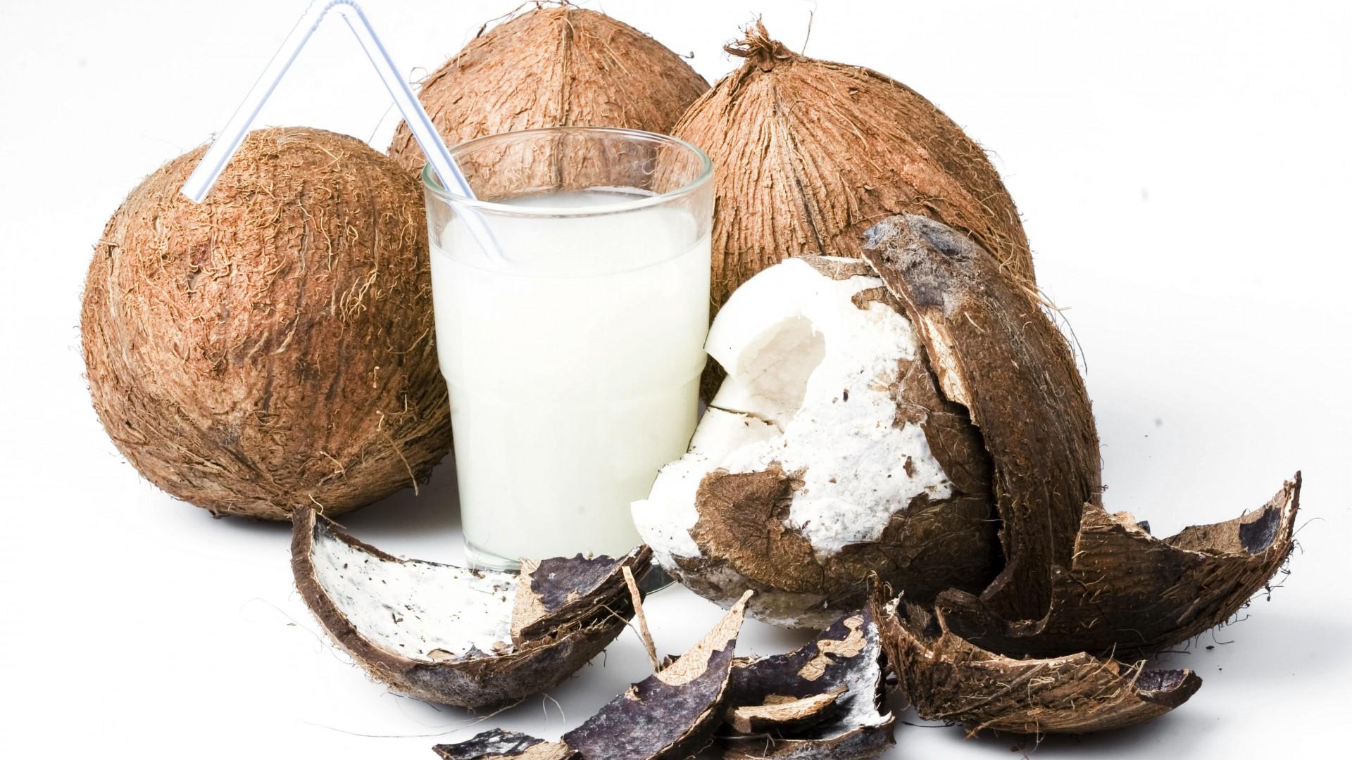 Мышь из кокоса подборки