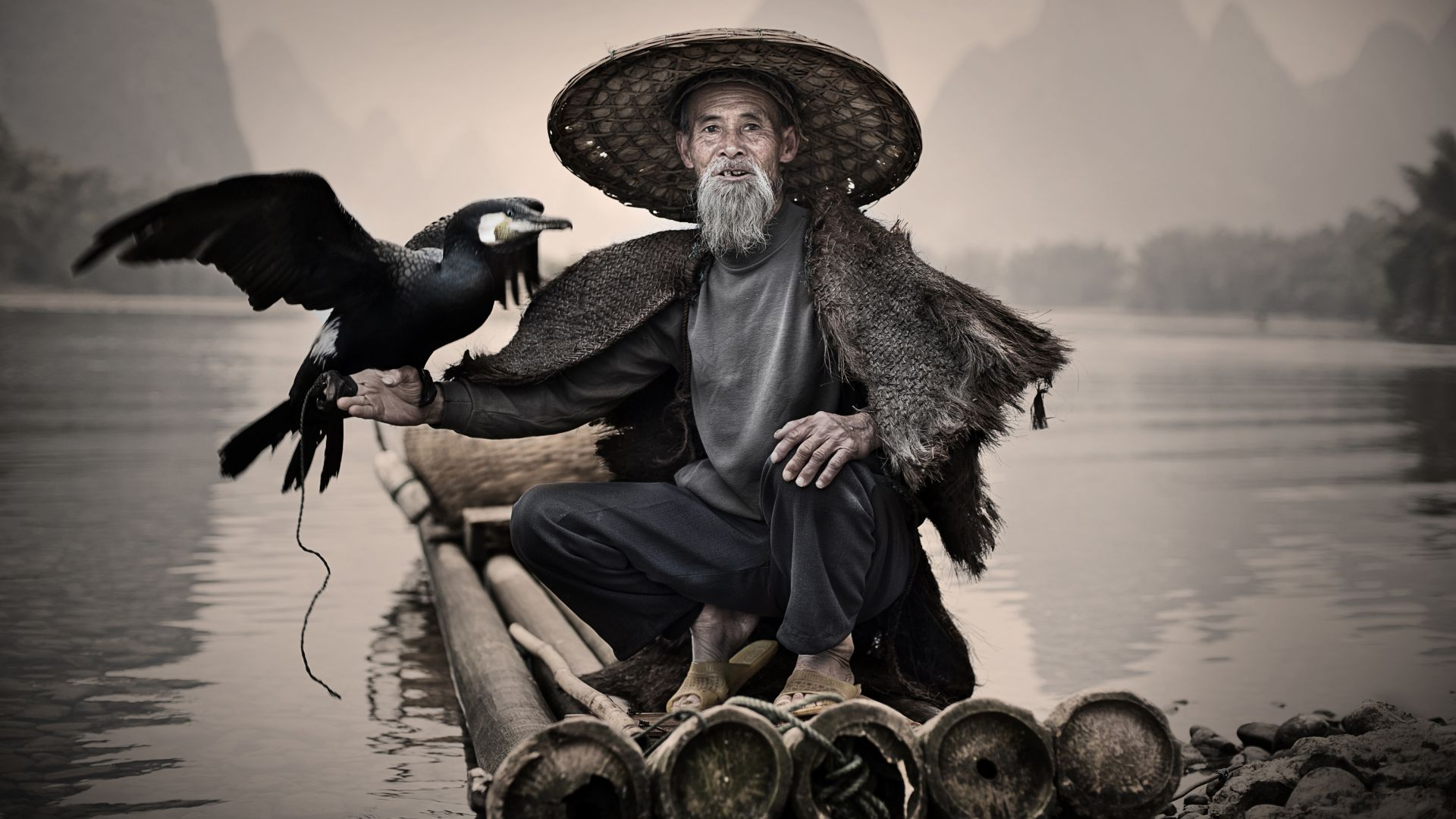 Баклан, Синпин, Китай, птица, Cormorant, Li-River, Xingping, China, fishing village, bird, National Geographic Traveler Photo Contest (horizontal)