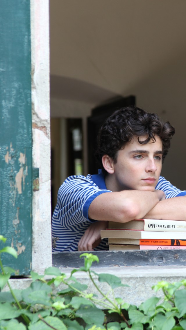 Позови меня своим именем, Call Me by Your Name, Timothee Chalamet, 5k (vertical)