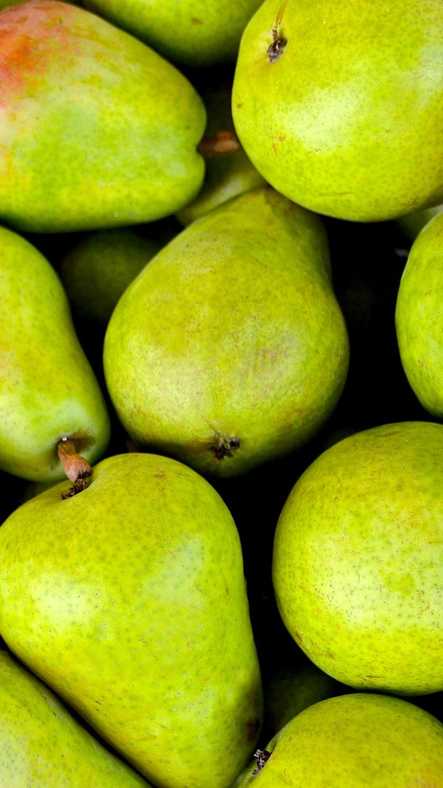 груши, pear, fruit, green, 5k (vertical)