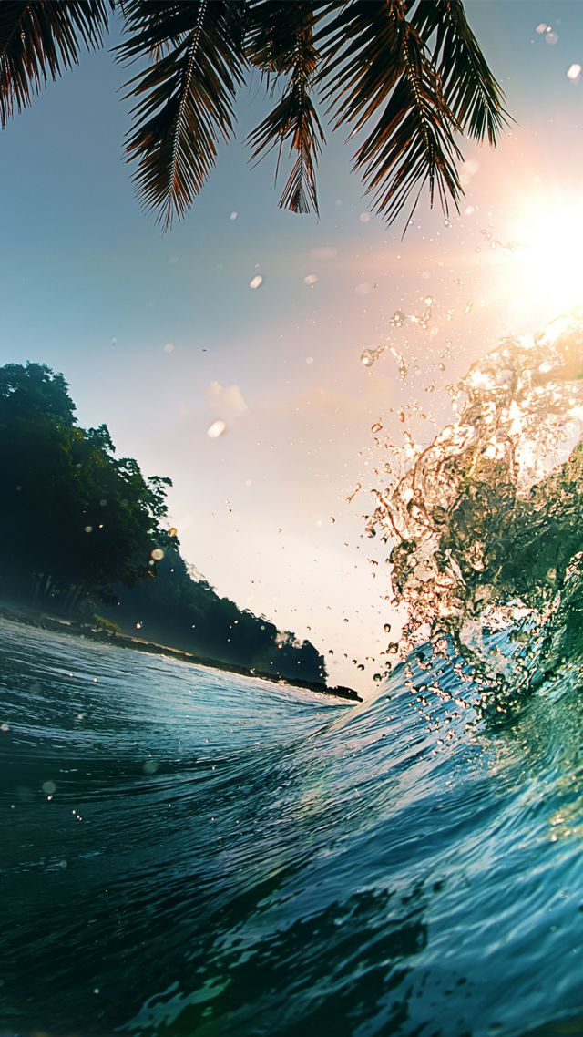 Обои Волна 5k 4k 8k океан пал�м� �олн�е wave 5k