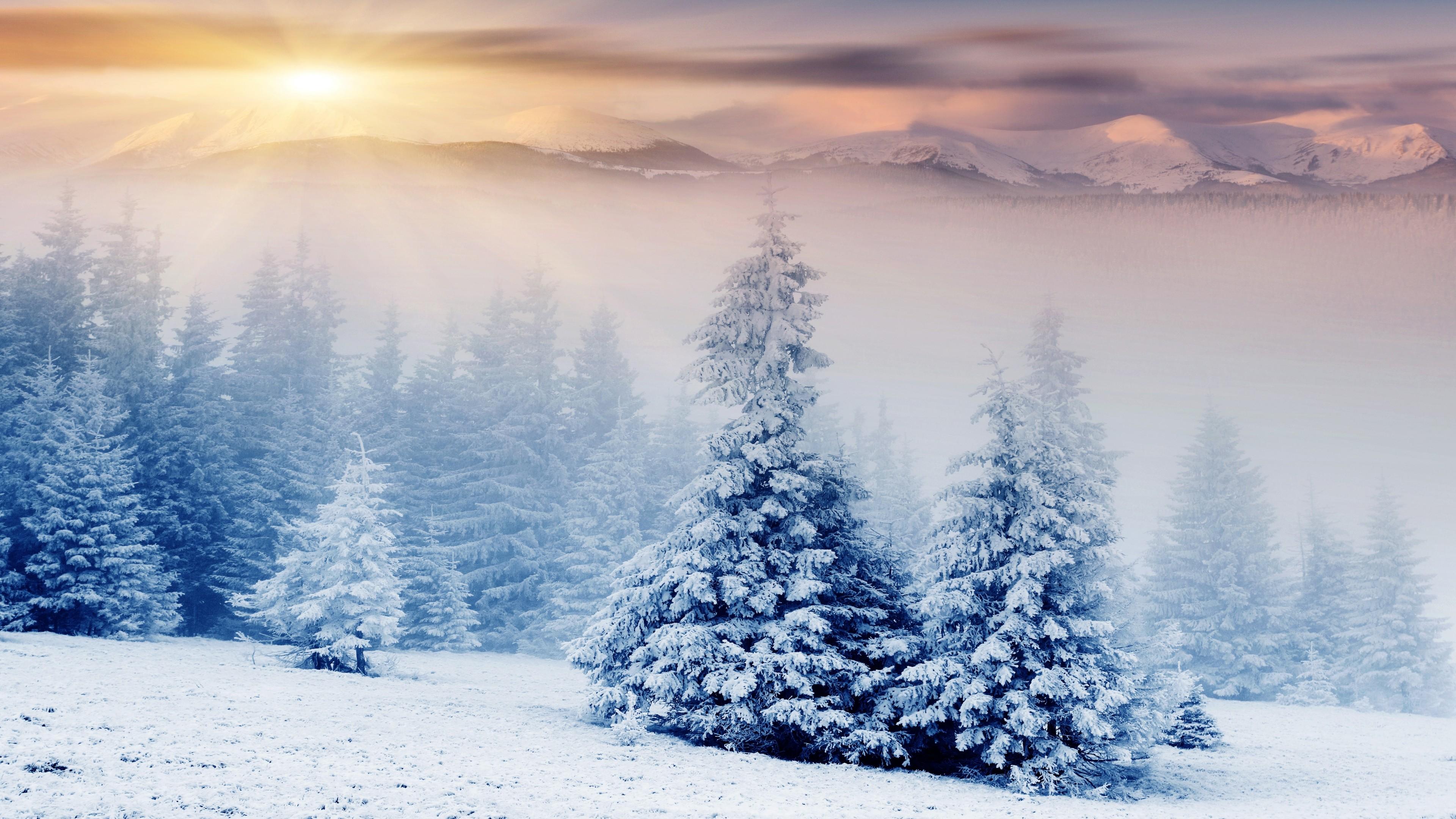 Обои snow, winter. Города foto 13