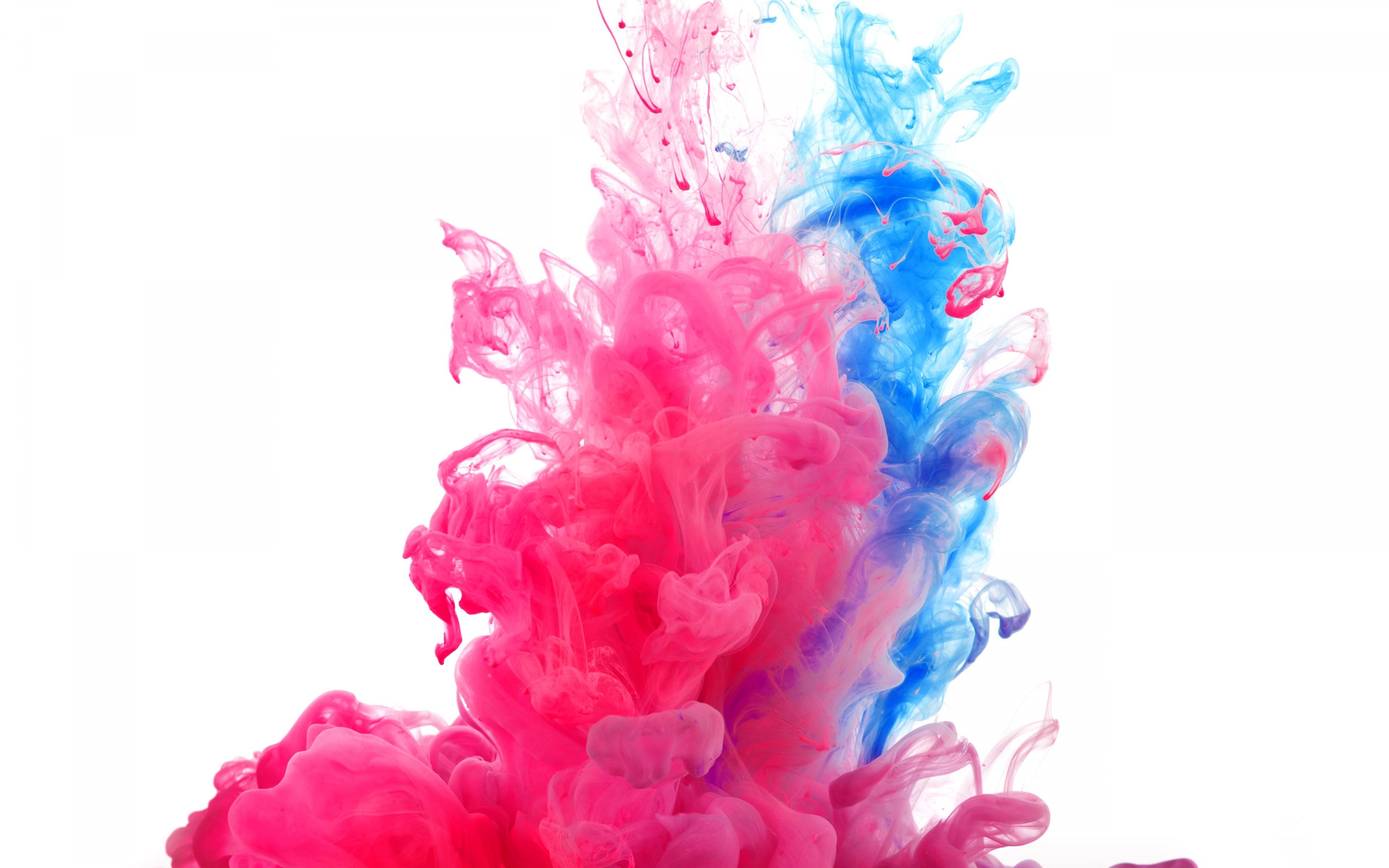 Image result for краски холи