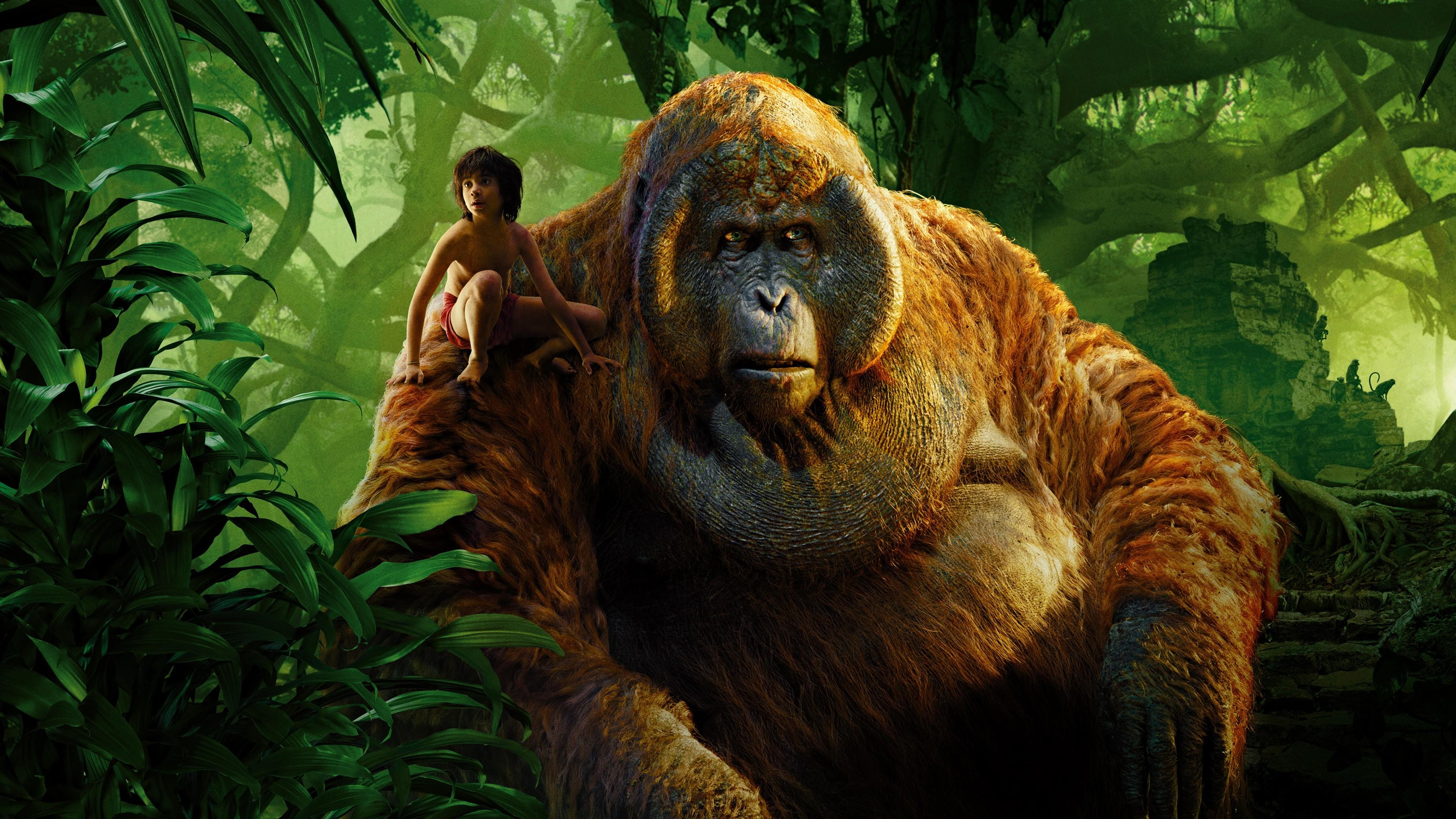 Скачать книга джунглей the jungle book
