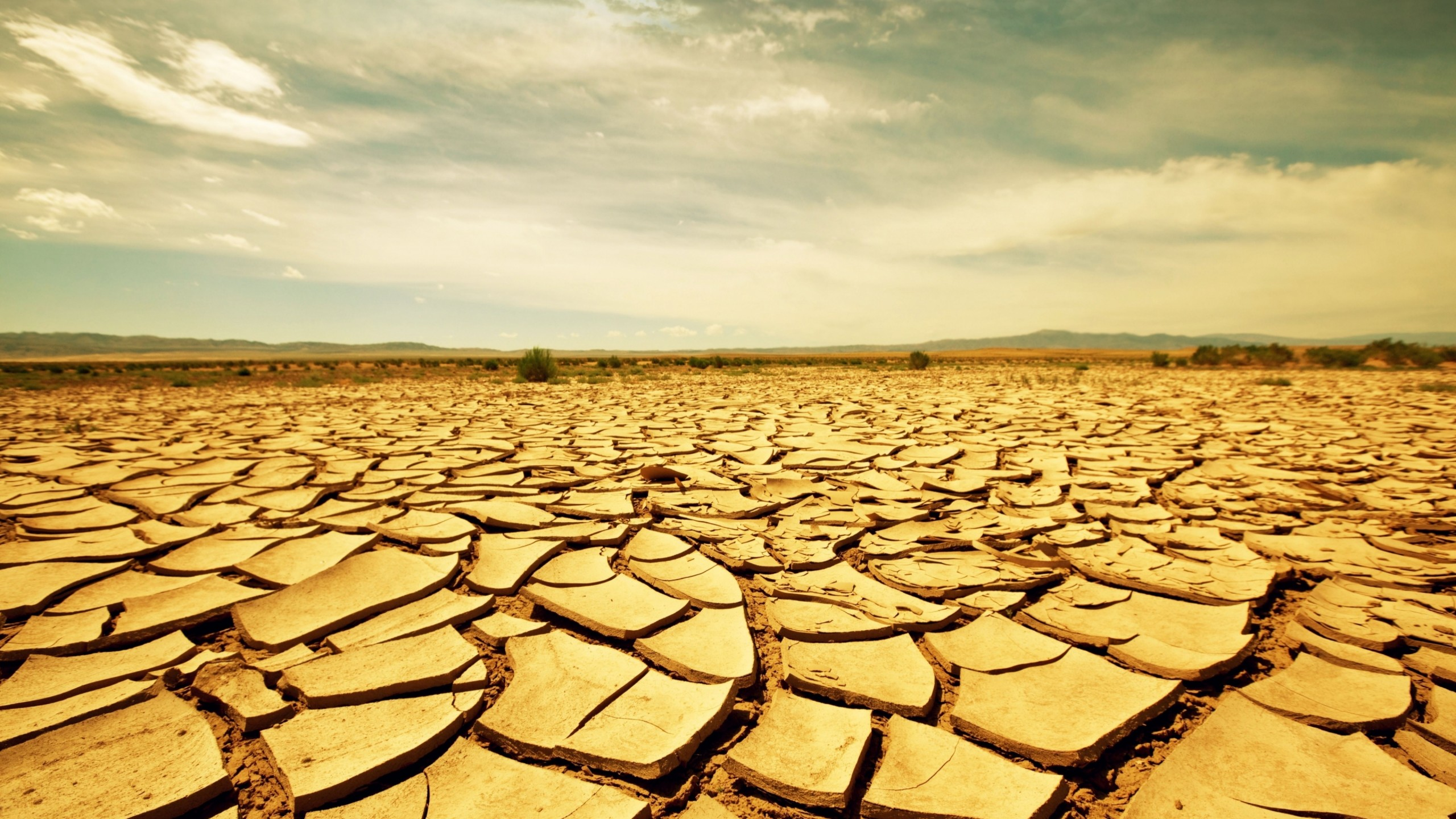 record breaking drought scientists agree - HD2048×1280